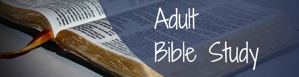 Bible Study Lessons for Adults | Lifeway